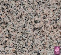 CG004 Rosa Pink 台红